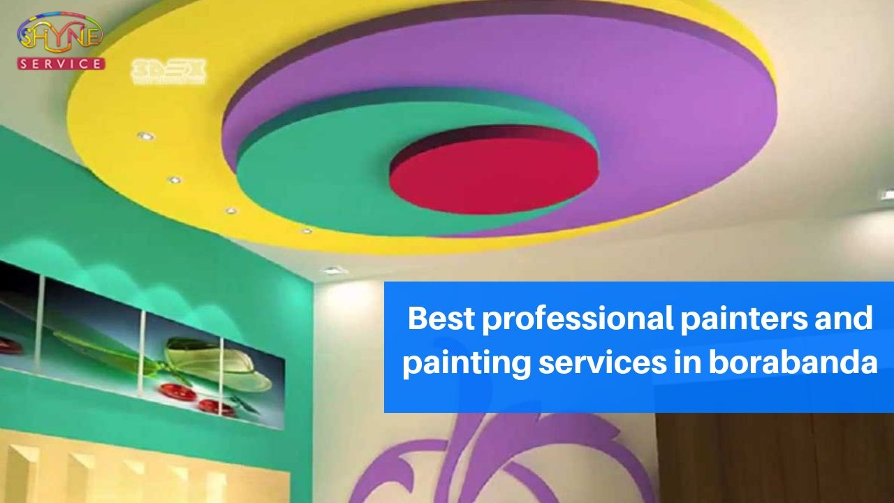 best professional painters and painting services in borabanda